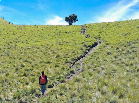 Explore Gunung Merbabu
