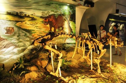Foto Museum Sejarah Sangiran