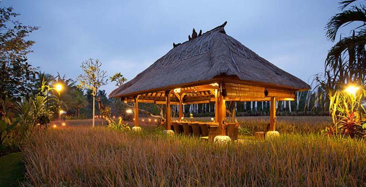 Wisata Alam Ubud