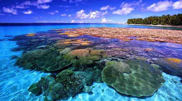 Gambar Destinasi Wisata Pulau Bunaken