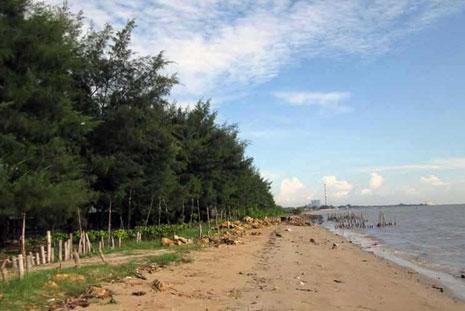 Gambar Pantai Cemara