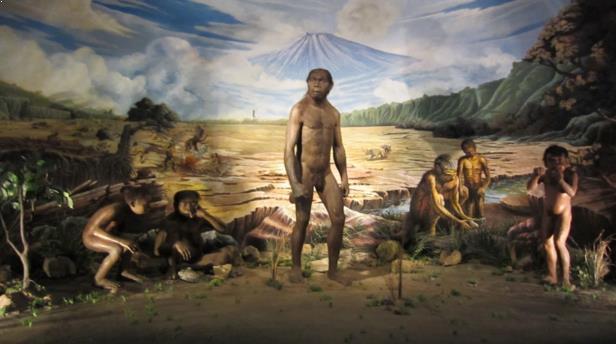Gambar Museum Sejarah Sangiran Sragen