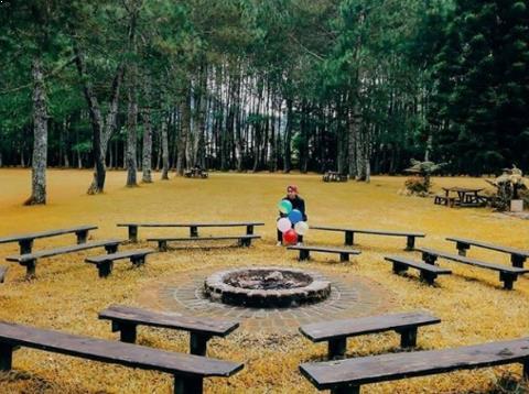 Gambar Pine Forest Camp Lembang