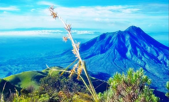 Gambar Wisata Gunung Merbabu