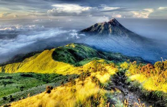 Jalur Track Gunung Merbabu