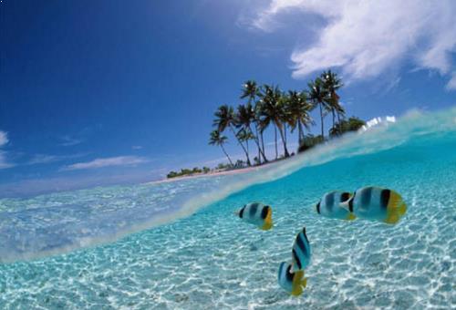 Tour Travel Pulau Batanta