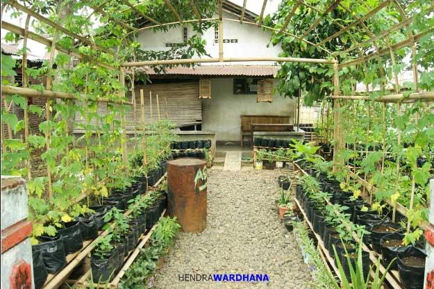 Kebun Tanaman Obat Sari Alam Bandung