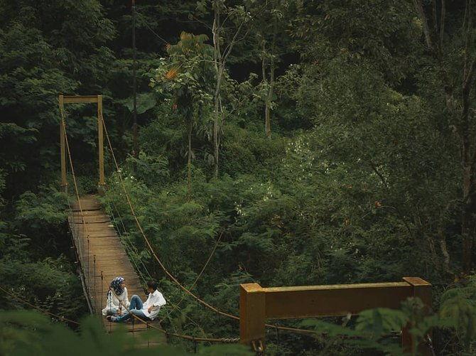 Gambar Taman Hutan Raya Ir. H. Juanda Bandung