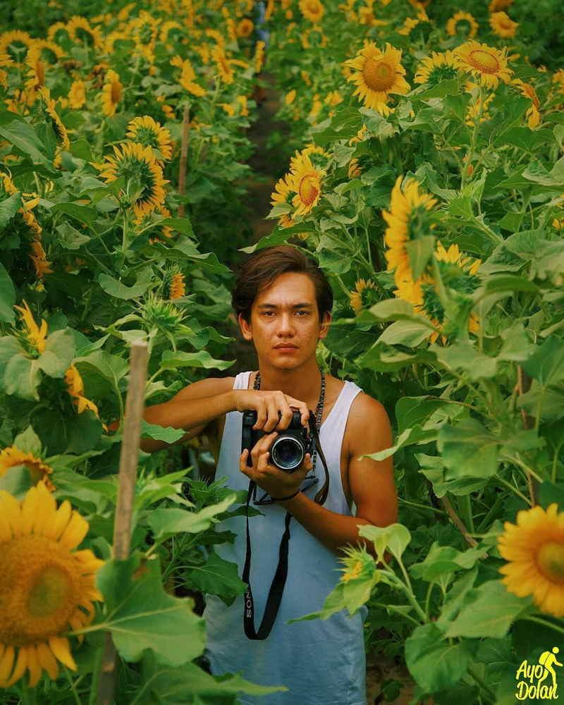 pantai samas bunga matahari