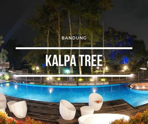 owner kalpa tree bandung