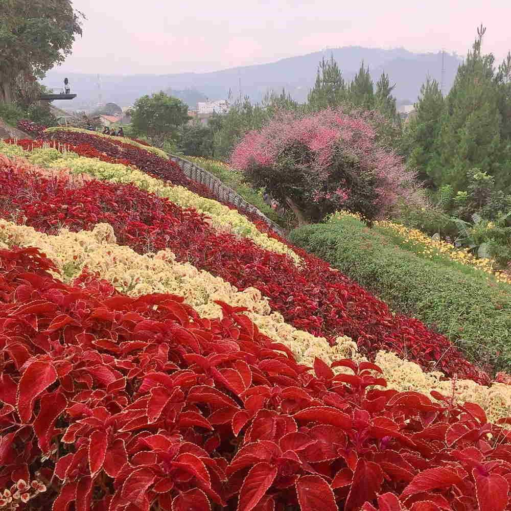 rainbow garden kabupaten bandung barat jawa barat indonesia