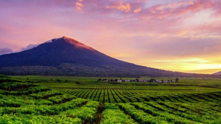 Gunung Kerinci Jambi
