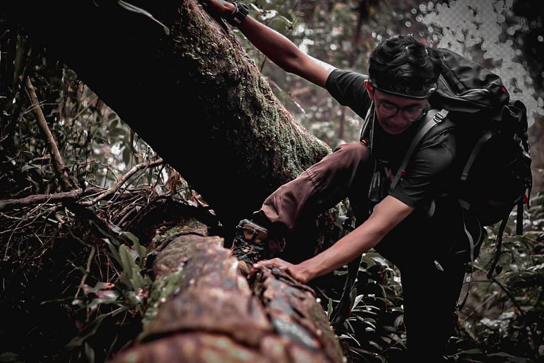 Lokasi Gunung Salak Bogor