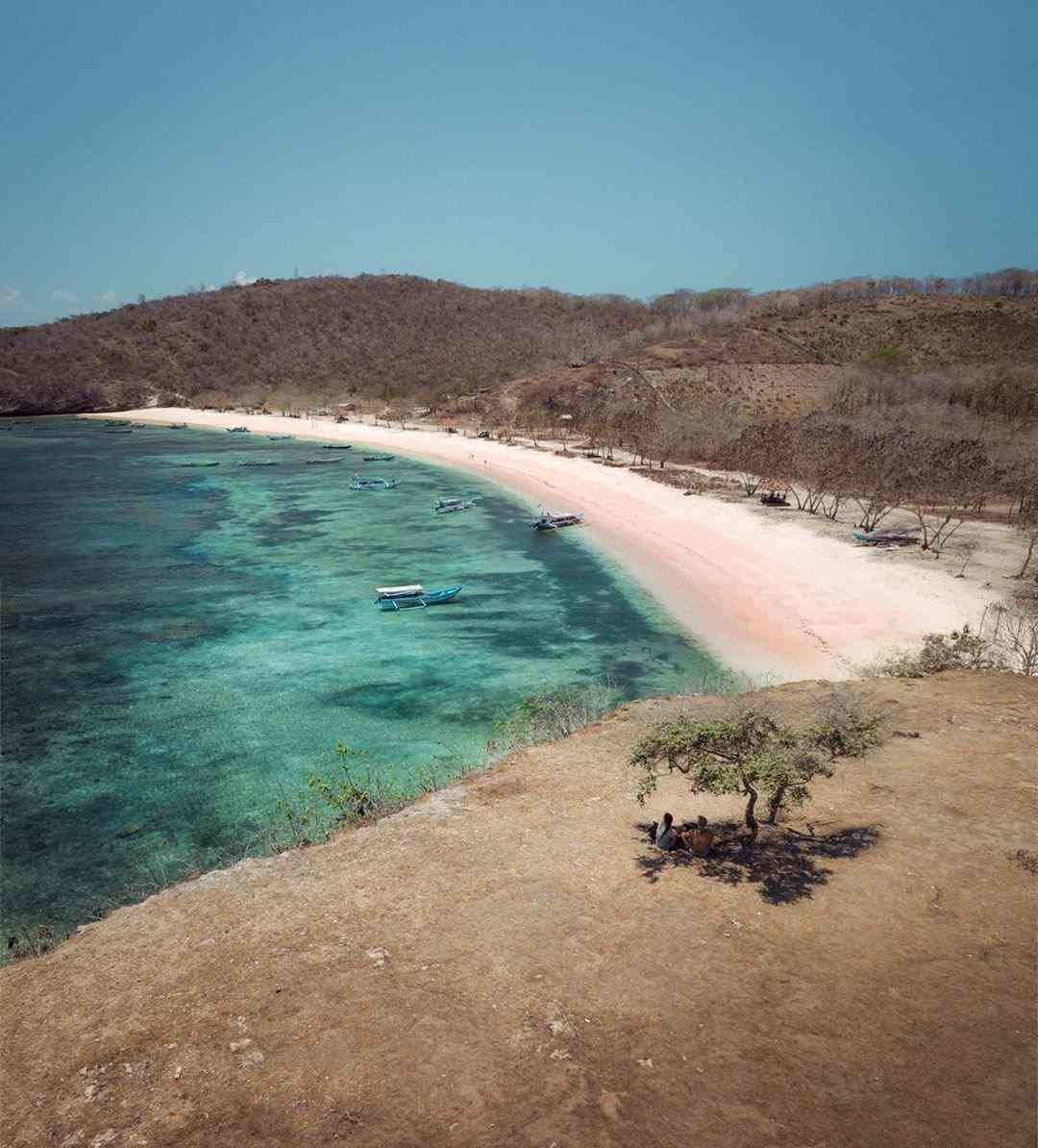 pantai pasir pink lombok
